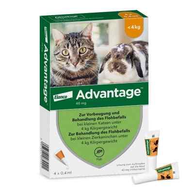 Advantage 40 mg für kl.Katzen und kl.Zierkaninchen  bei apotheke.at bestellen