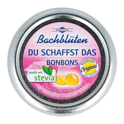 Bachblüten Murnauer Du schaffst das Bonbons