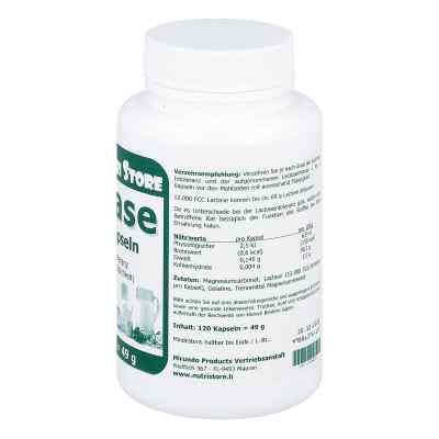 Lactase 12000 Fcc Enzym Kapseln  bei apotheke.at bestellen