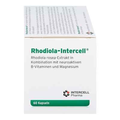 Rhodiola Intercell Kapseln