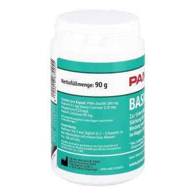 Panaceo Basic-detox Kapseln  bei apotheke.at bestellen