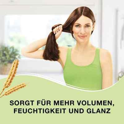 Priorin Shampoo - ergänzende Pflege für kraftloses Haar  bei apotheke.at bestellen
