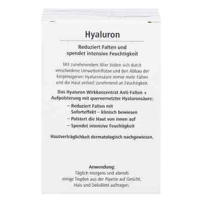 Hyaluron Wirkkonzentrat Anti-falten+aufpolsterung