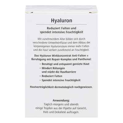 Hyaluron Wirkkonzentrat Anti-falten+beruhigung  bei apotheke.at bestellen