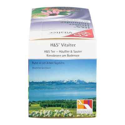 H&s Heisser Holunder Vitaltee Filterbeutel  bei apotheke.at bestellen