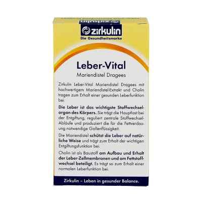 Zirkulin Leber-vital Mariendistel Dragees