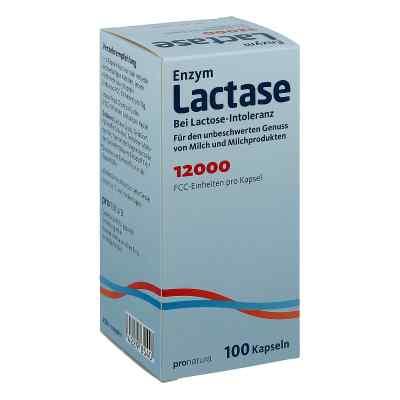 Lactase 12.000 Fcc Kapseln  bei apotheke.at bestellen