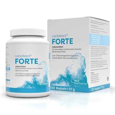 Lactobact Forte magensaftresistente Kapseln  bei apotheke.at bestellen