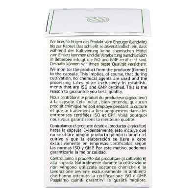 Reishi Ganoderma lucidum 360 mg Hartkapseln  bei apotheke.at bestellen