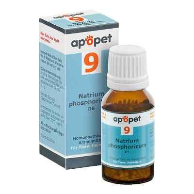 Apopet Schüssler-salz Nummer 9  Natrium phosphoricum D  6 veteri