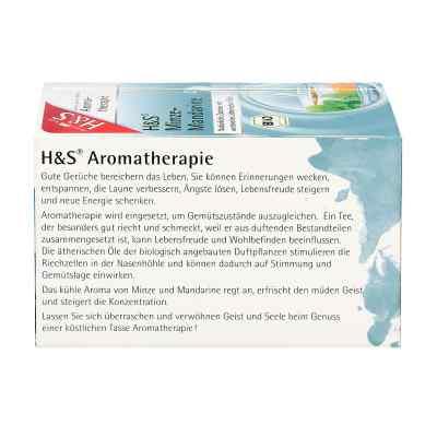 H&s Bio Minze-mandarine Aromatherapie Filterbeutel  bei apotheke.at bestellen