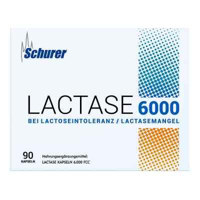 Schurer Lactase 6000 Kapseln  bei apotheke.at bestellen